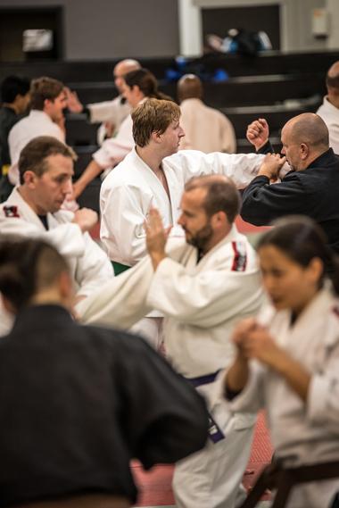 ryukyu kempo shuri karate small circle jujitsu modern arnis brazilian jiu jitsu